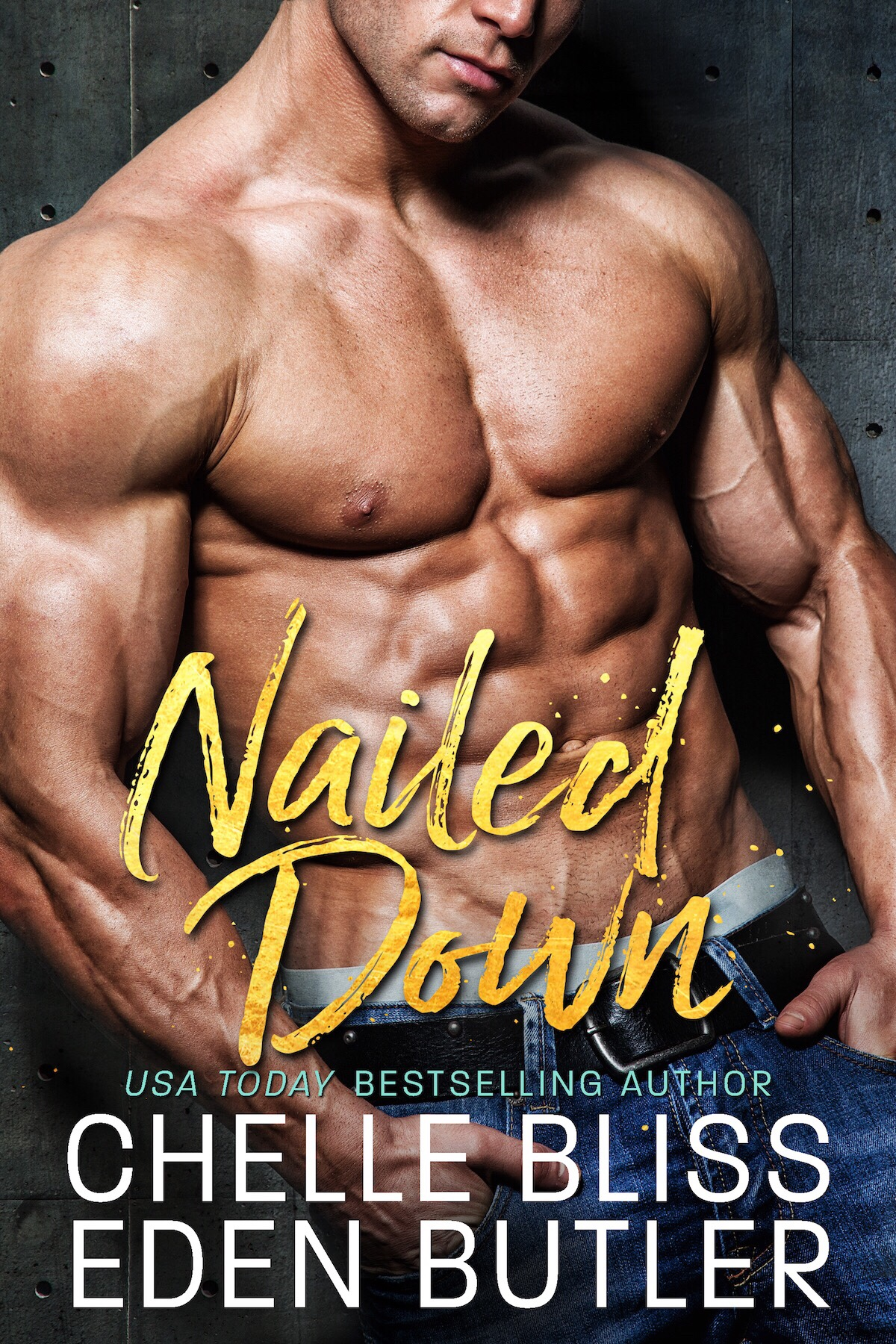 Review: Nailed Down (Nailed Down #1) by Chelle Bliss and Eden Butler