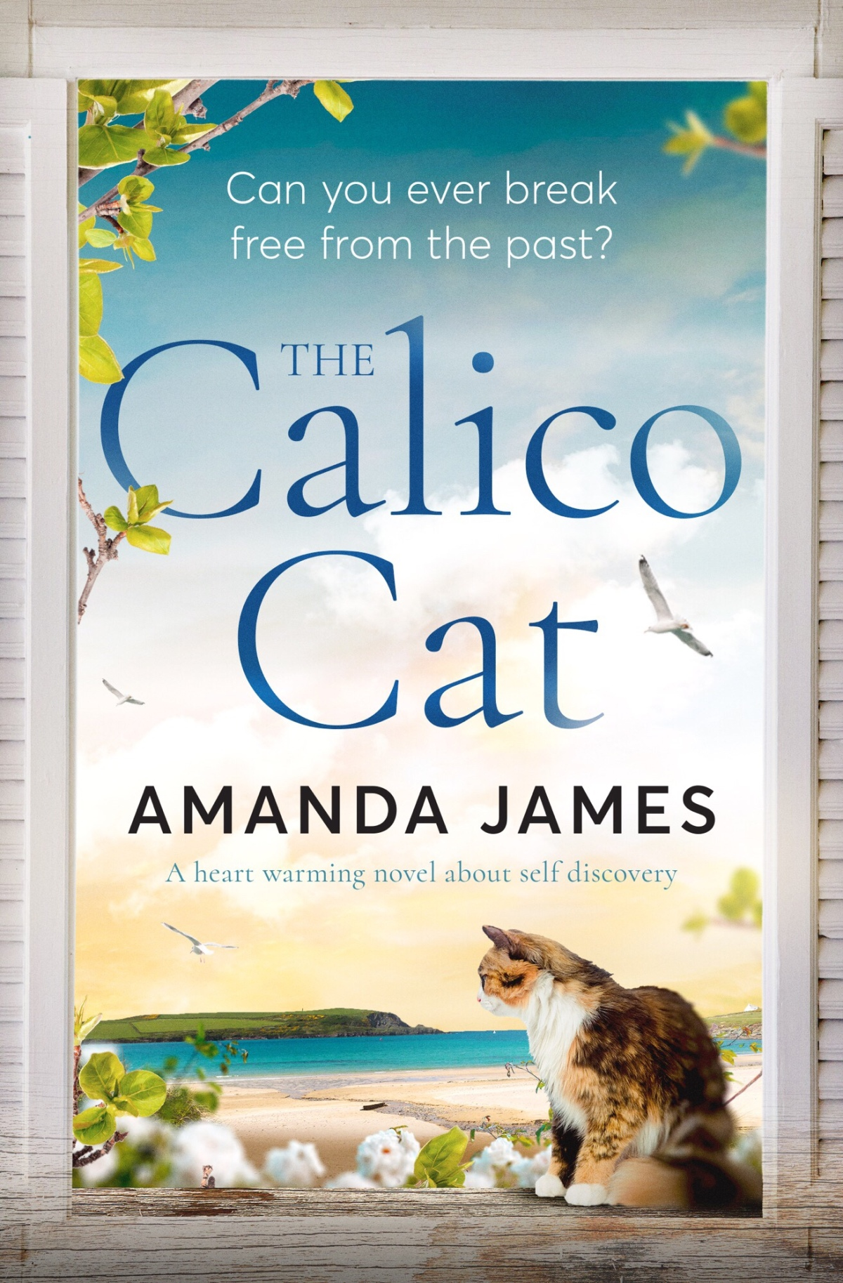 Interview with Lottie Morgan – The Calico Cat by AmandaJames